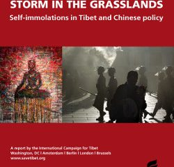 Storm in the Grasslands: Self-immolations in Tibet and Chinese policy